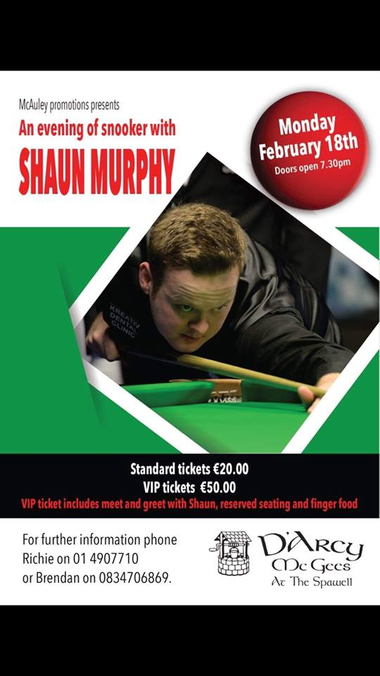 Shaun Murphy at D'Arcy McGees at The Spawell